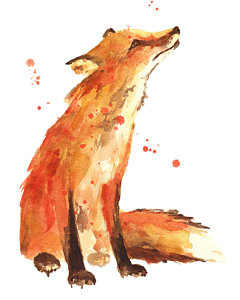 240x300 Fox Painting