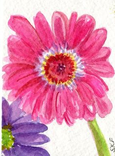 236x321 Orange Gerbera Daisy Watercolors Paintings Original, Gerber Daisy