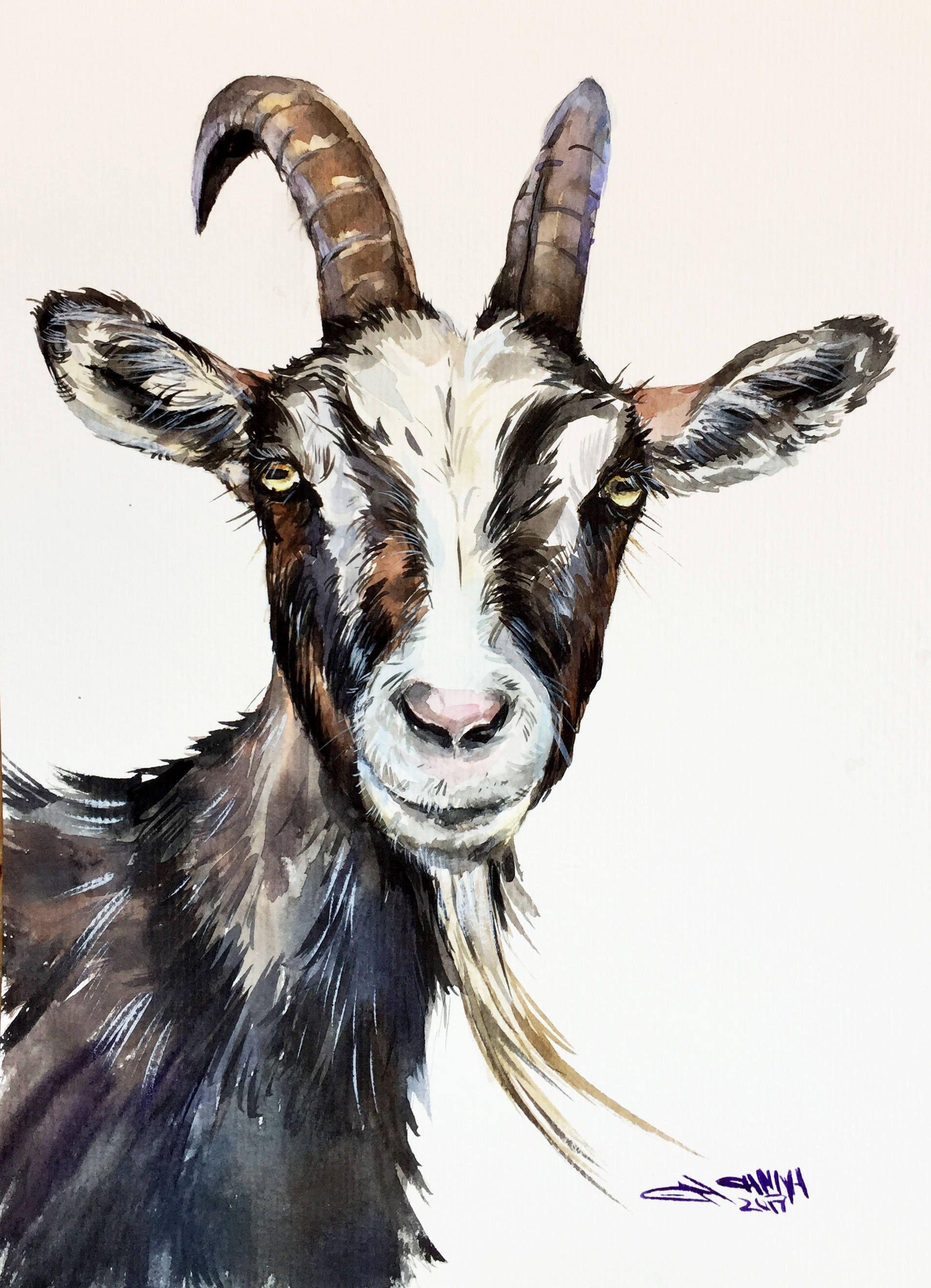1908x2640 Goat Faced Portrait, Goat Art, Farm Animal Portrait, Goat Decor