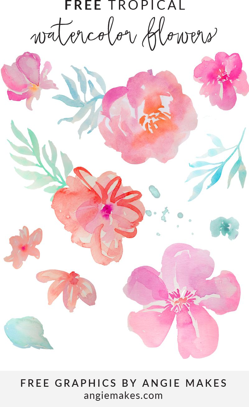 800x1306 Free Tropical Watercolor Flower Clip Art By Graphic Freebies