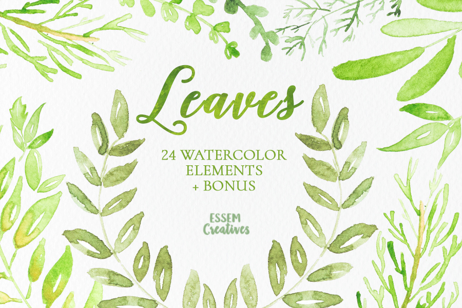 900x600 Watercolor Leaves And Branches Clipart Essem Creatives