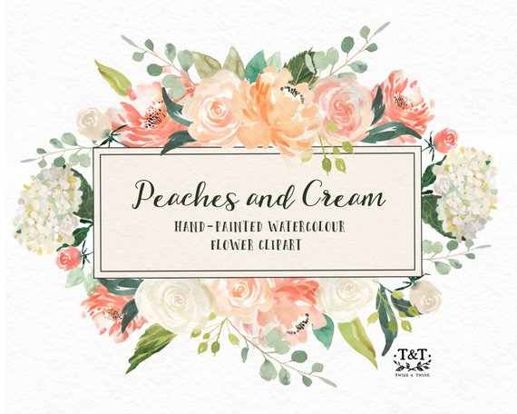 570x456 Flower Watercolor Clipart Hand Painted Graphics Peaches And Etsy