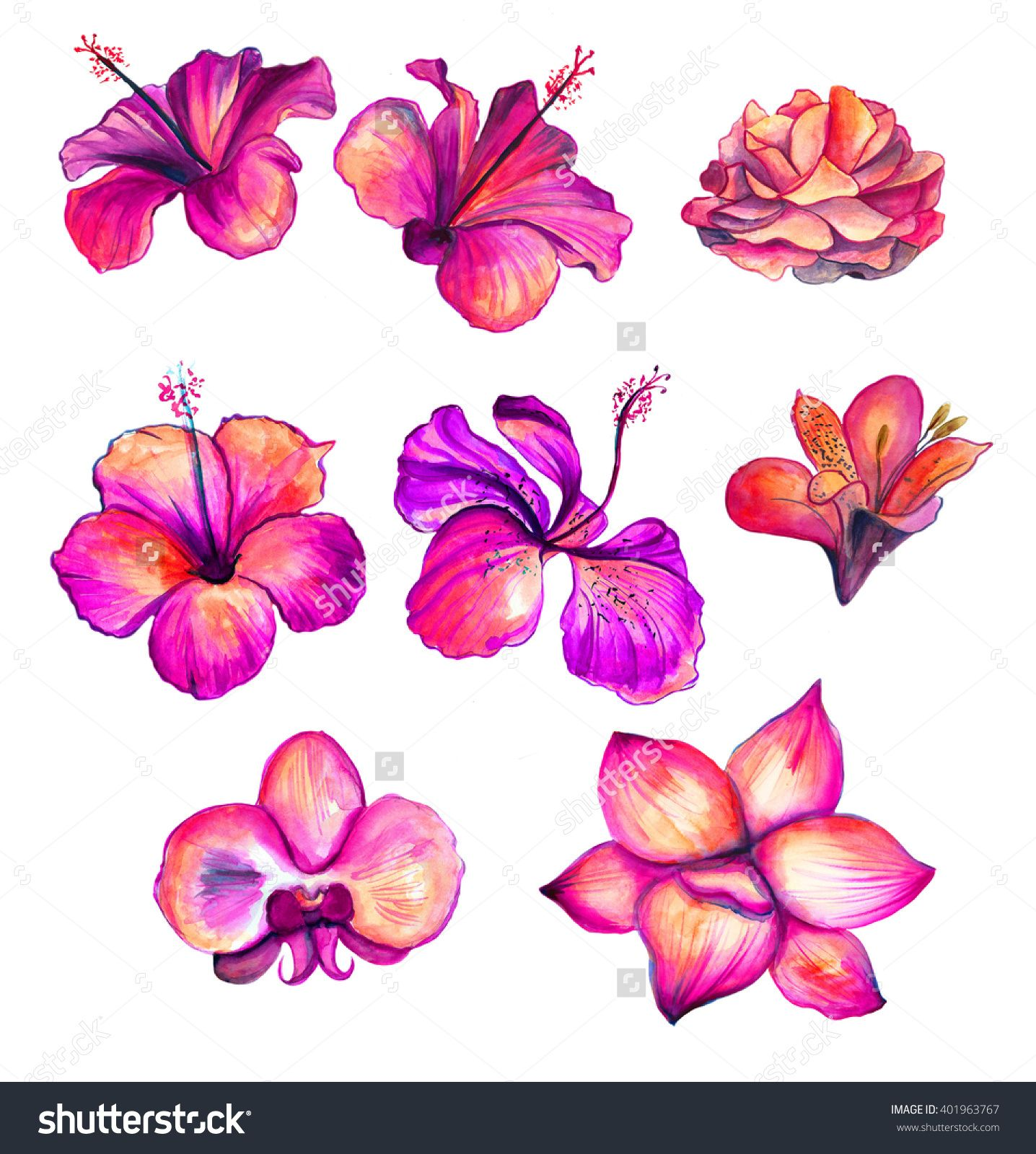 1436x1600 Bright Red Watercolor Hibiscus, Rose, Orchid, Lily Flowers