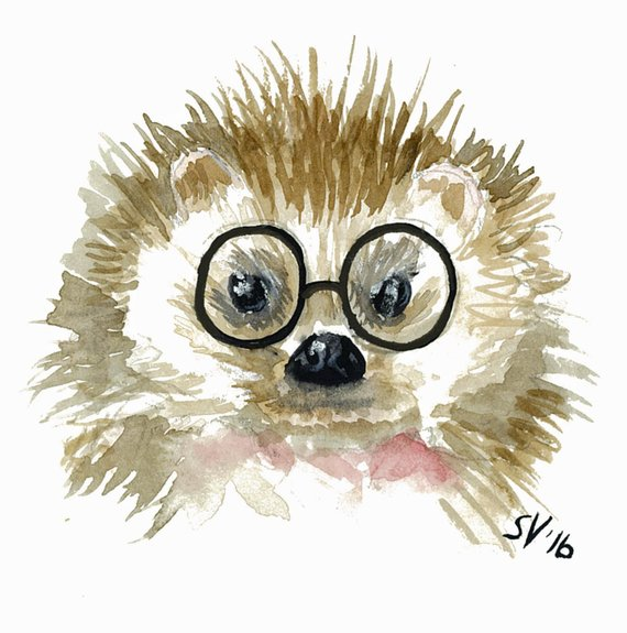 570x575 Watercolor Hipster Hedgehog Gallery Wrapped Canvas