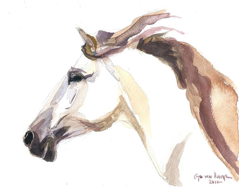 765x600 Horse Art Equine Paintings Horse Julia Go Van Kampen