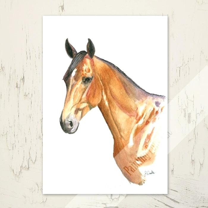 700x700 Water Color Horse Horse Head Equestrian Watercolor Note Cards