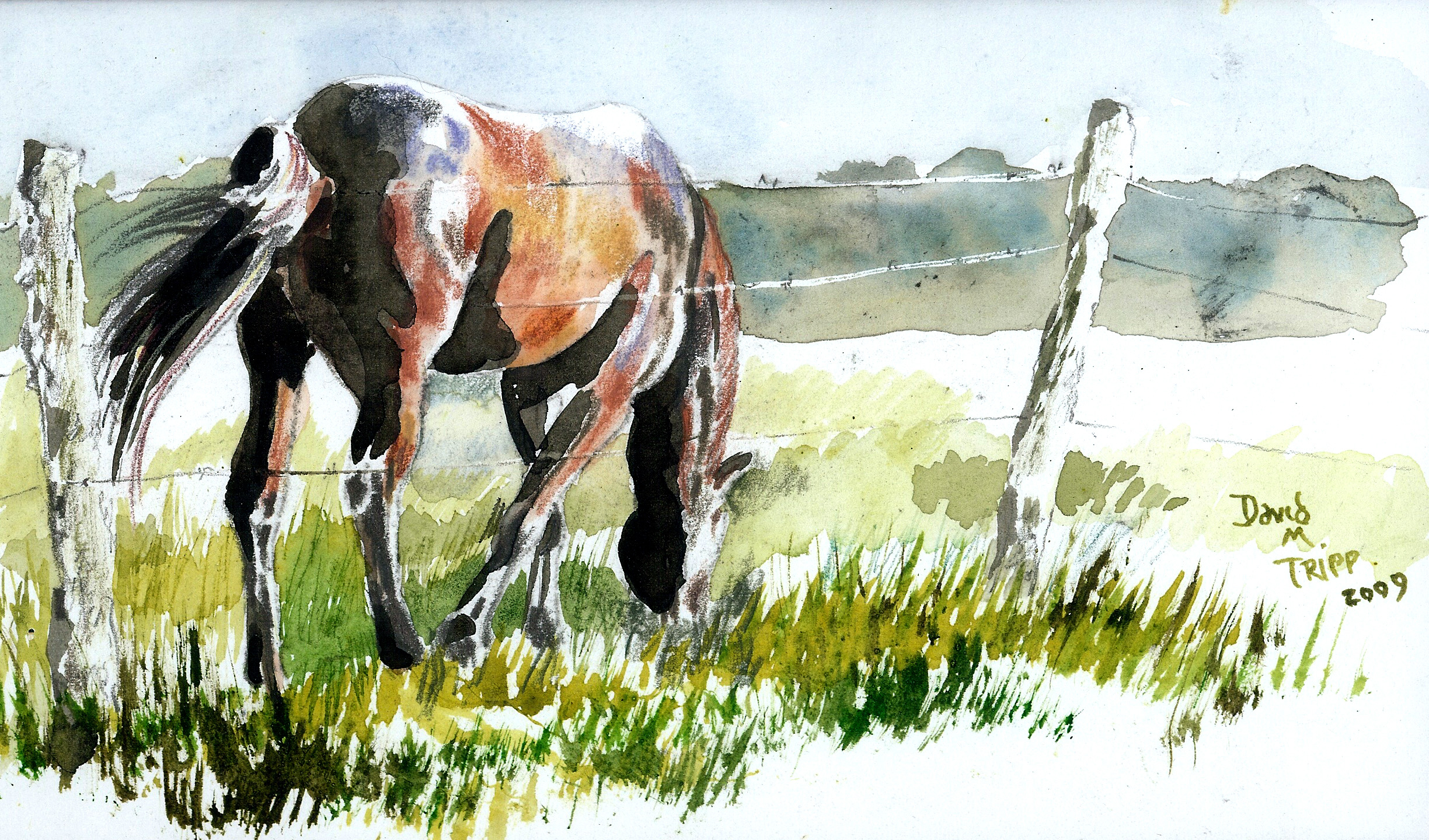 2448x1440 Watercolor Paintings Of Horses Idyllic Pastures, January 25, 2010
