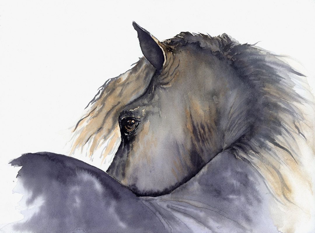 1080x798 Watercolor Paintings Of Horses Watercolor Speed Painting Horse