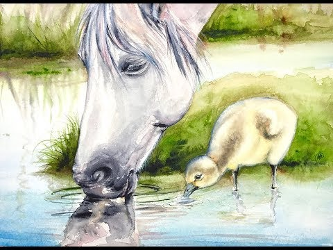 480x360 Watercolor White Horse Painting Demonstration