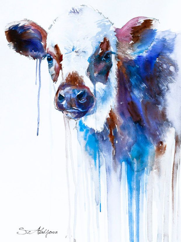 620x829 Cow Watercolor Painting Print, Animal, Illustration, Animal