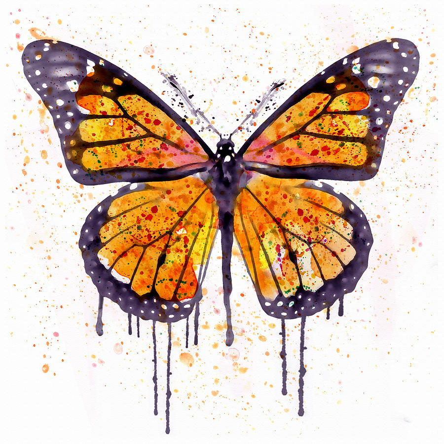 900x900 Monarch Butterfly Watercolor Painting By Marian Voicu