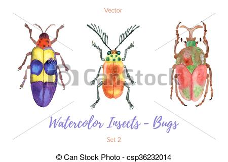 450x319 Set Of Hand Painted Watercolorbugs, Vector. Set Of Colorful, Hand