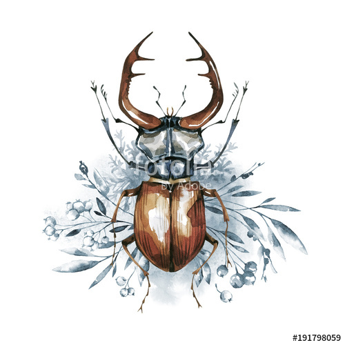 500x500 Watercolor Beetle With Horns On A Floral Background. Animal