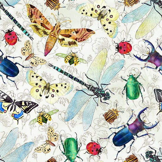 550x550 Watercolor Insects Posters By Gaia Marfurt Redbubble