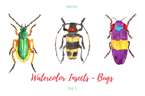 500x333 Watercolor Insects With Bugs Vector 02