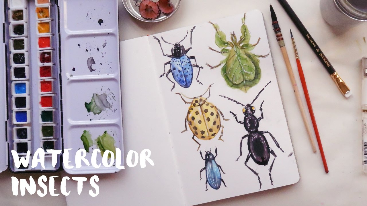 1280x720 Watercolor Insects Aquaril 1