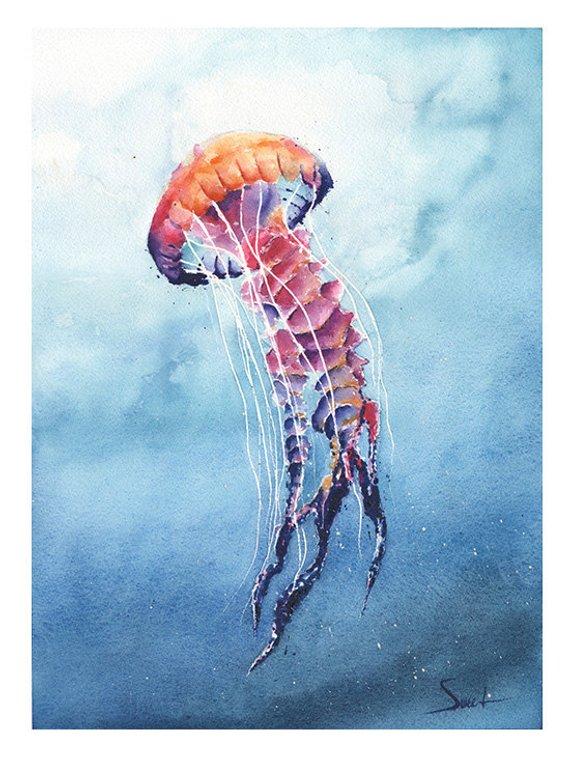 570x757 Jellyfish Art Print Watercolor Jellyfish Painting Jellyfish Etsy