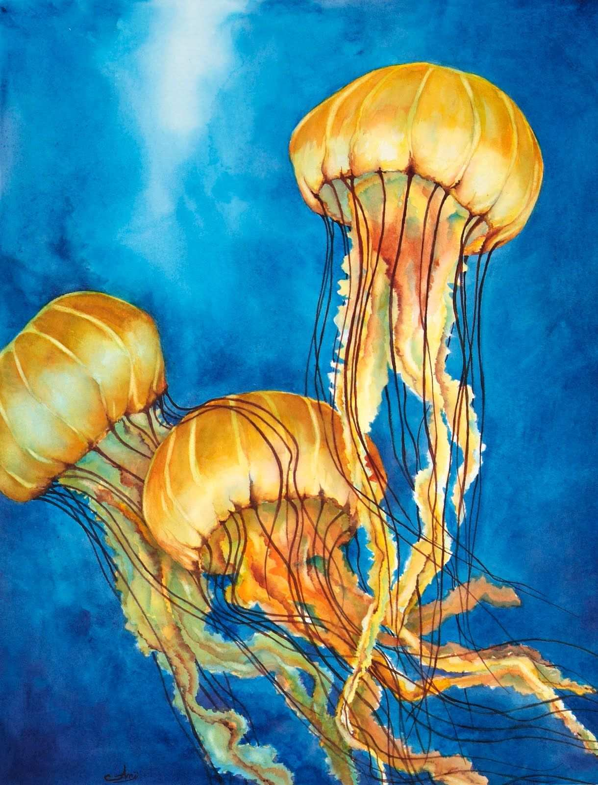 1220x1600 Jellyfish Painting Inspirational Watercolor Jellyfish Paintings