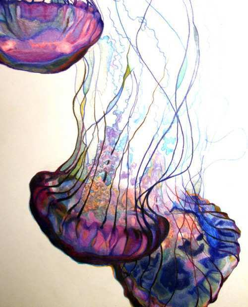 500x618 Jellyfish Painting Unique Watercolor Jellyfish Painting Ideas