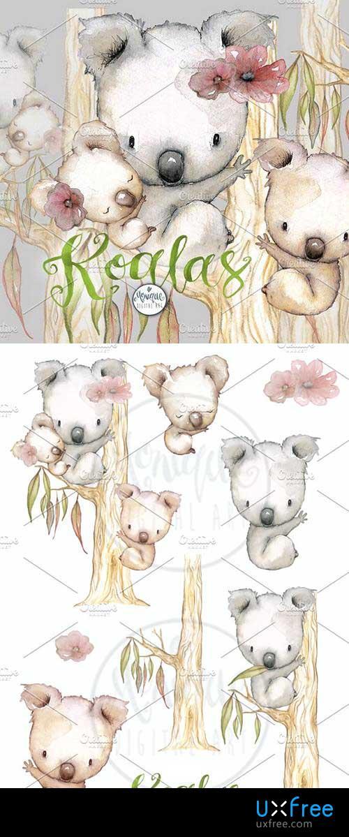 500x1199 Koala Clipart Watercolor 1636848