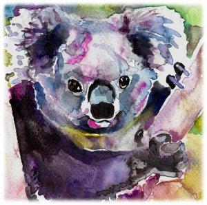 300x298 Koala Watercolor Painting Print