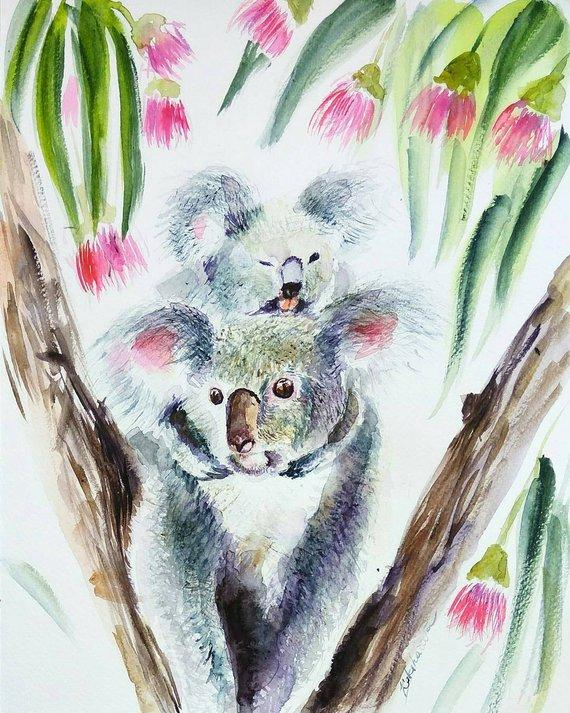 570x713 Koala Mom And Child In Eucalyptus Original Watercolor Painting