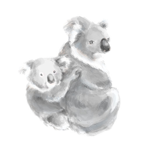 500x500 Nursery Art, 8x10 Koala Painting, Koala Bear, Koala Baby, Kids