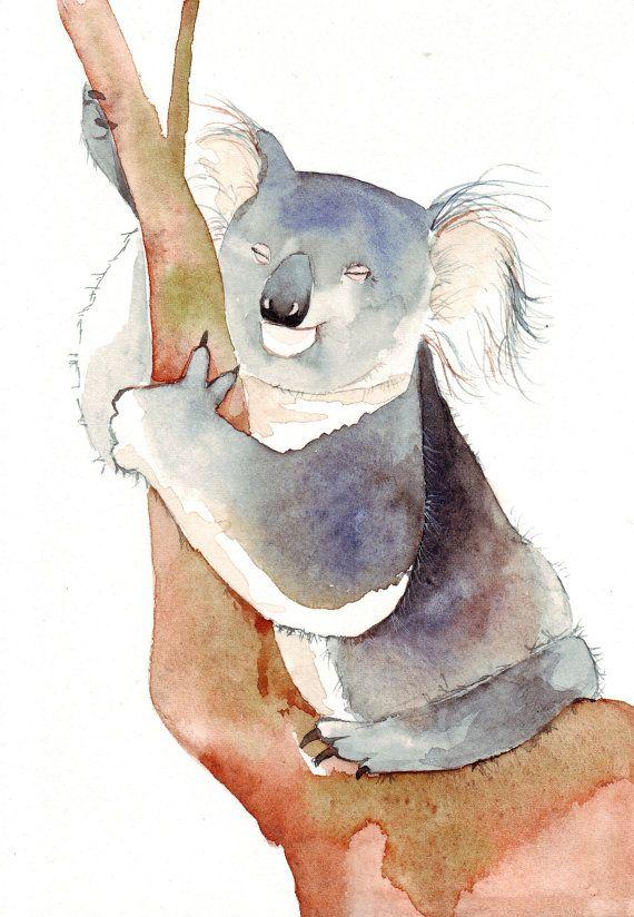 570x824 Watercolour Koala Watercolors Watercolor, Animal