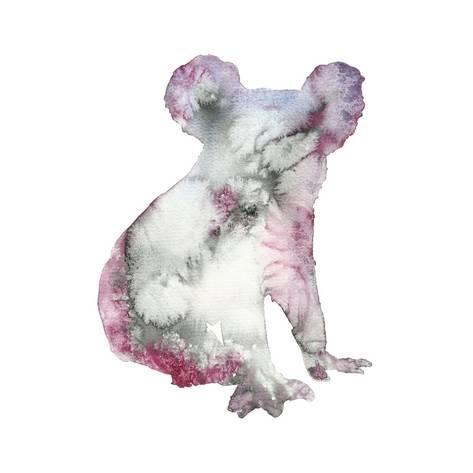 473x473 Watercolor Koala Bear Animal Illustration Hand Drawn Wildlife
