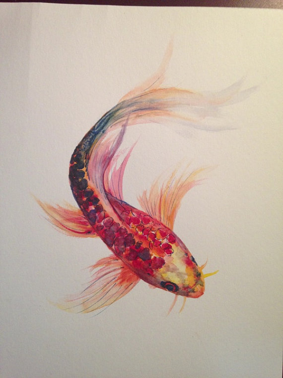 Watercolor Koi Tattoo