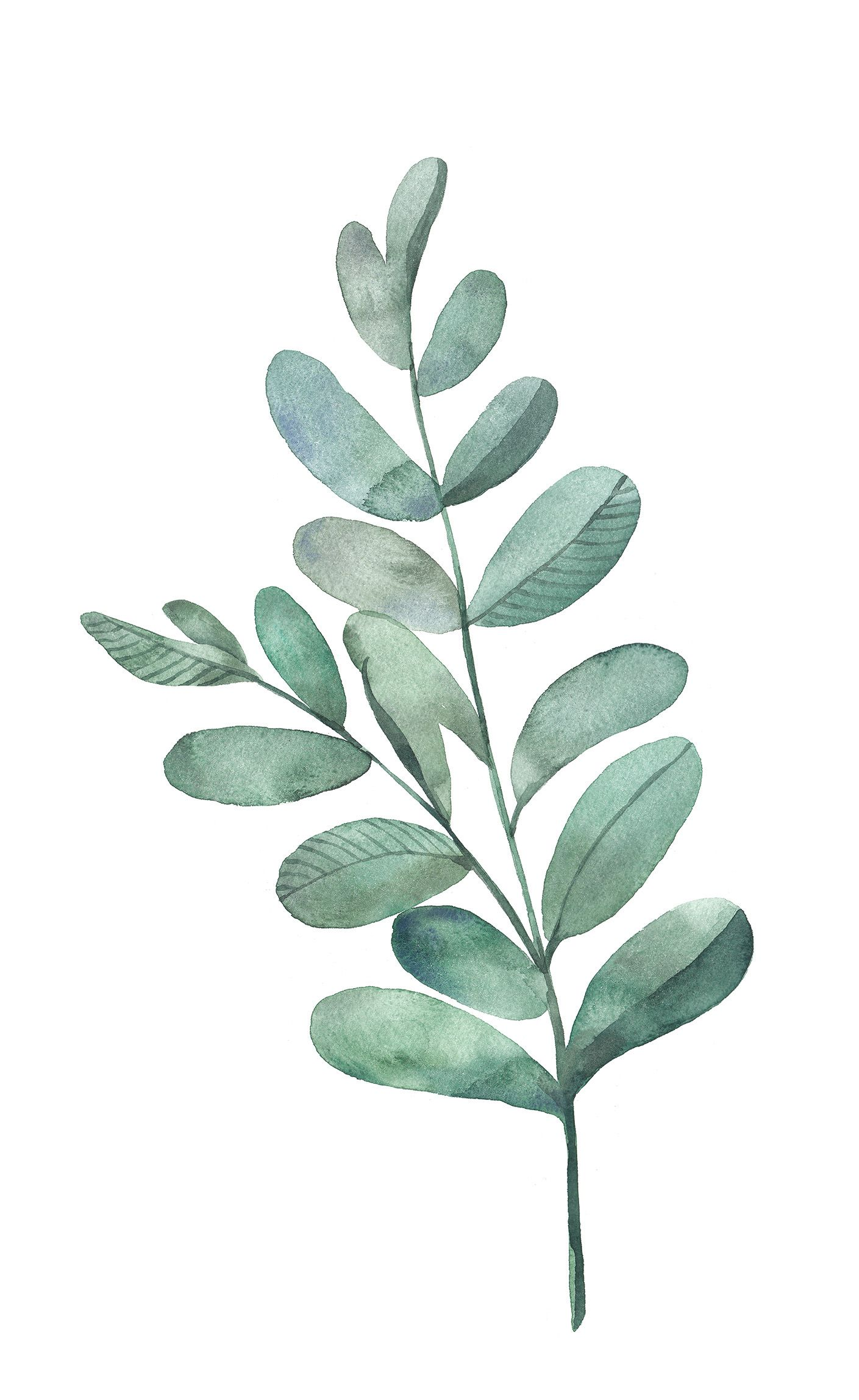 1409x2294 Watercolor Leaf Art Watercolor Leaves, Watercolor
