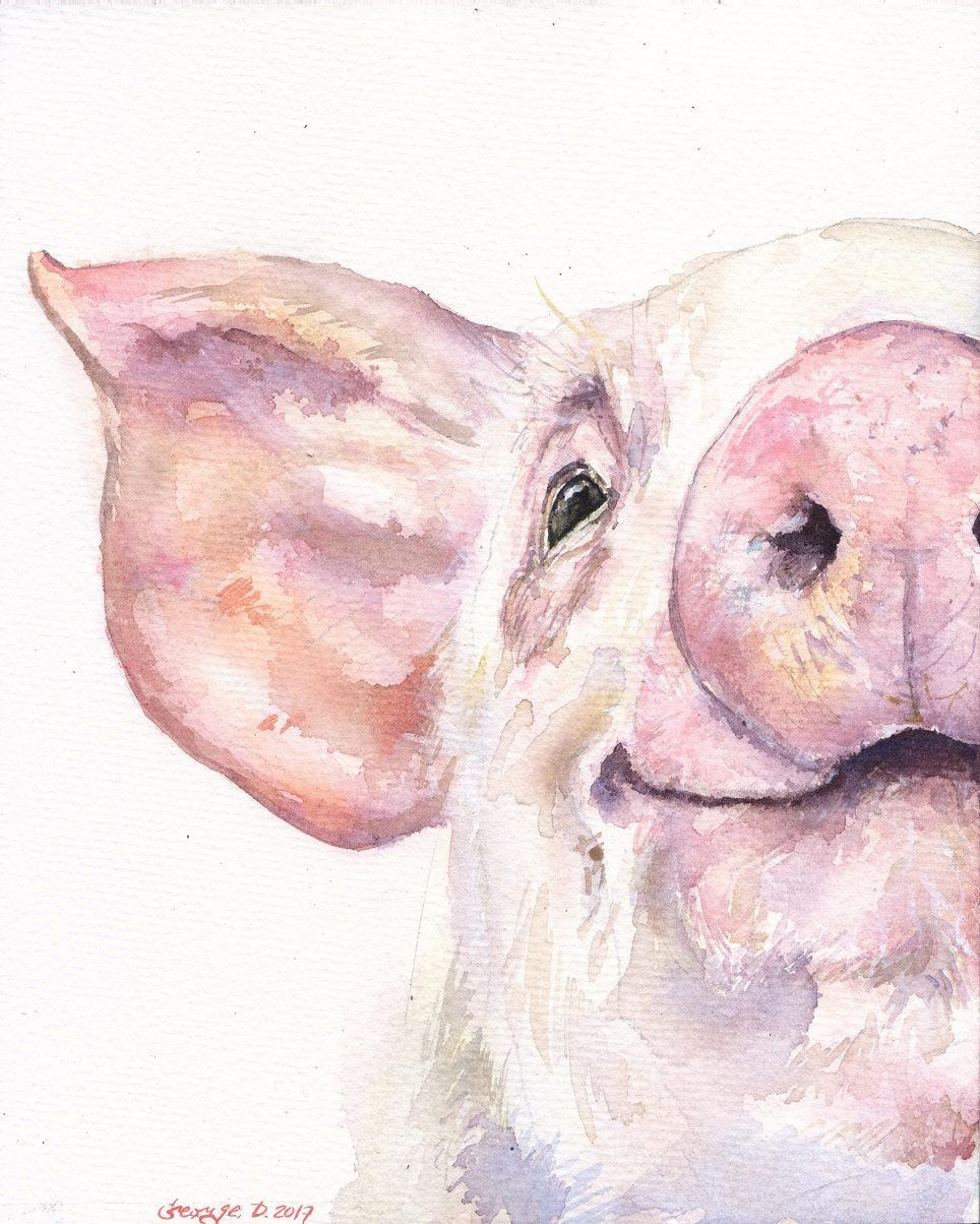 964x1204 Happy Pig Portrait Print Of The Original Watercolor Love Painting