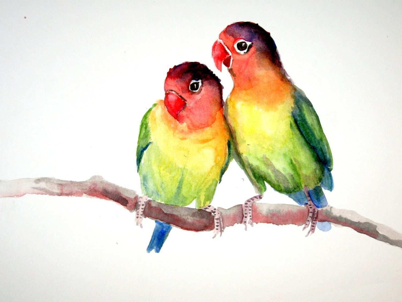 1500x1126 Love Birds Painting Inspirational Lovebirds Original Watercolor