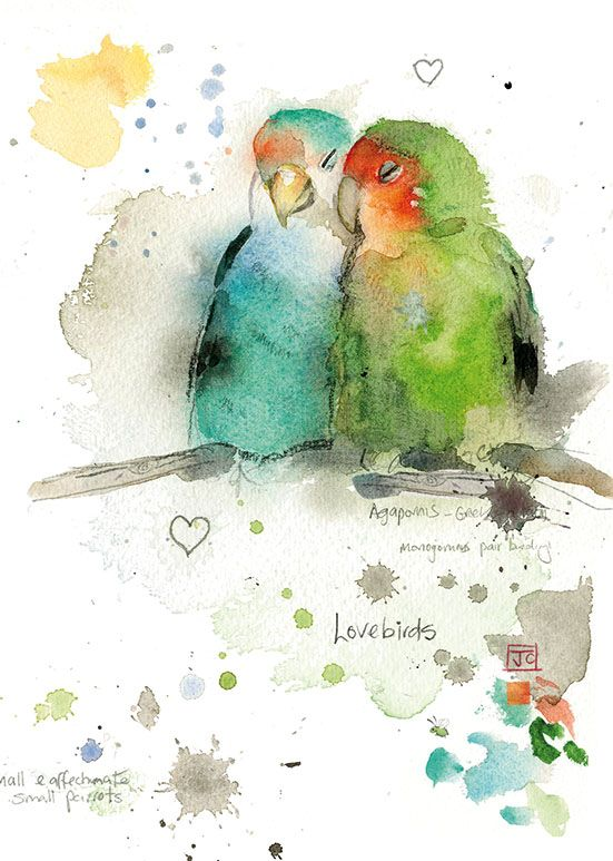 551x773 Bug Art F013 Lovebirds Greetings Card Jane Crowther