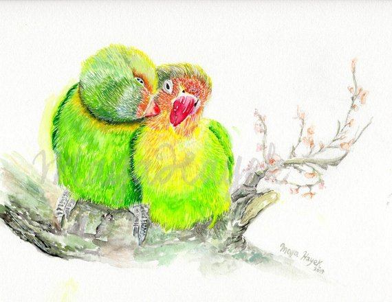 570x440 Lovebirds Painting Lovebirds Print Watercolor Loverbirds