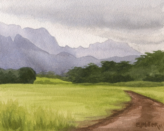 530x424 Afternoon Mountains, Lihue