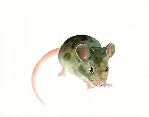 500x393 Mouse 7x5inch Print Art Print Animal Watercolor Print Giclee Print