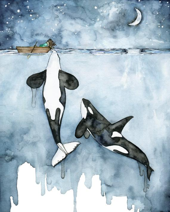 570x708 Orca Painting Watercolor Painting Whale Painting Orca And Etsy