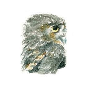 288x288 Watercolor Owl, Owl Print, Owl Art, Owl Painting Jen Holloway Art