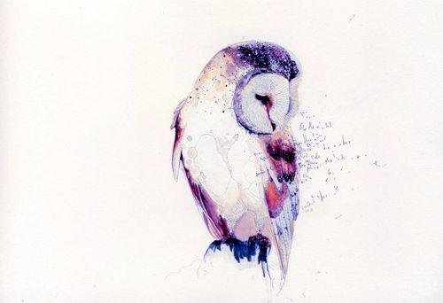 500x342 Watercolor Owl Tattoo Watercolor Owl Tattoos, Owl