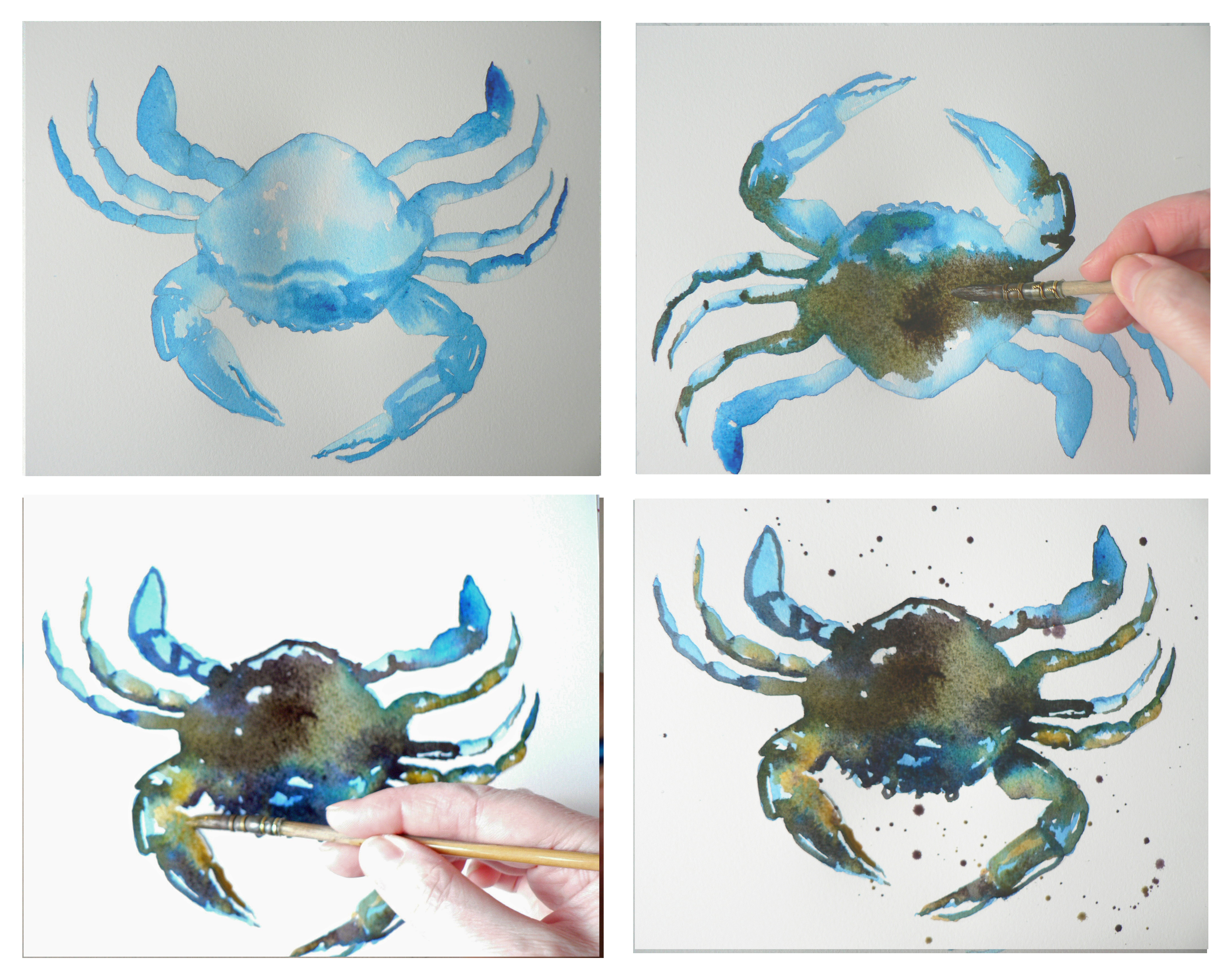 2814x2237 How To Paint A Watercolour Crab Alison Fennell Art