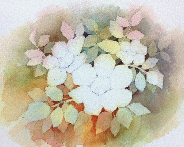 600x480 Introduction To Negative Watercolor Painting