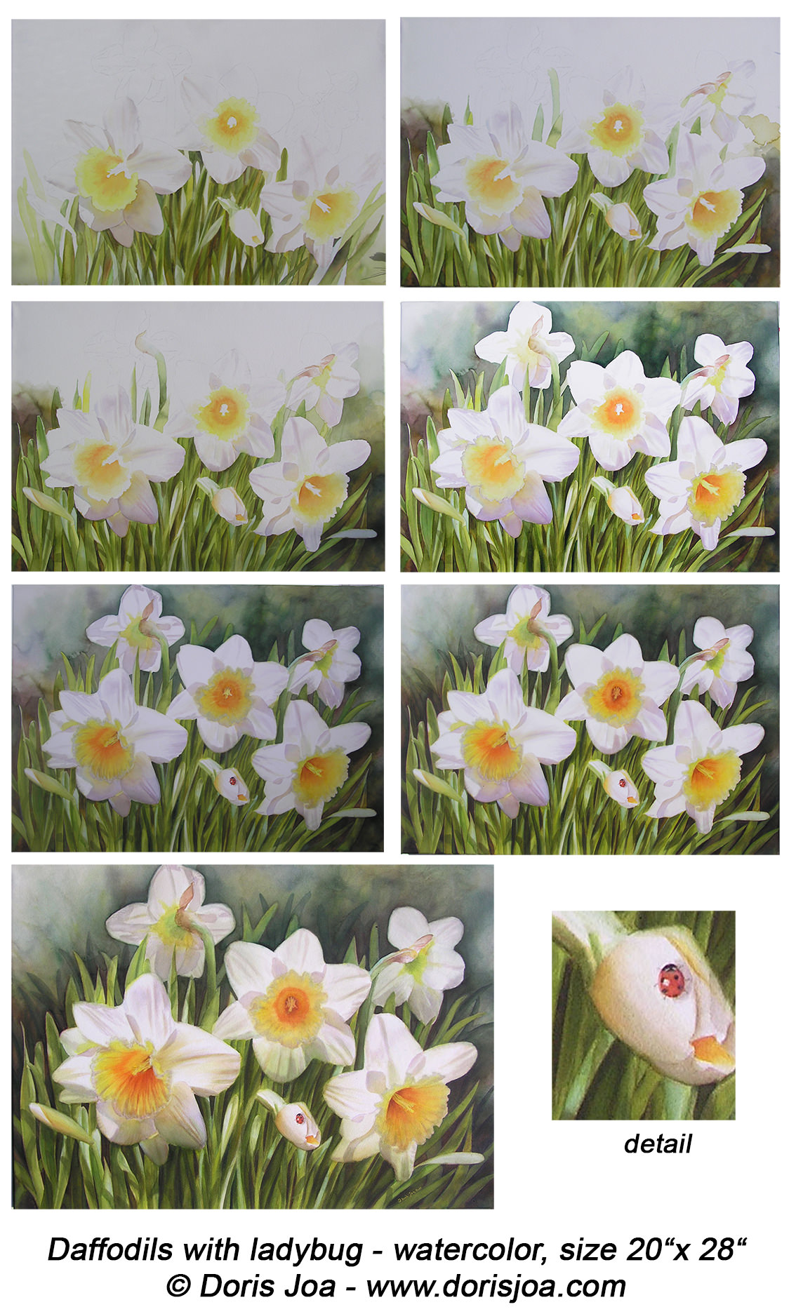 1134x1873 Painting Of Daffodils