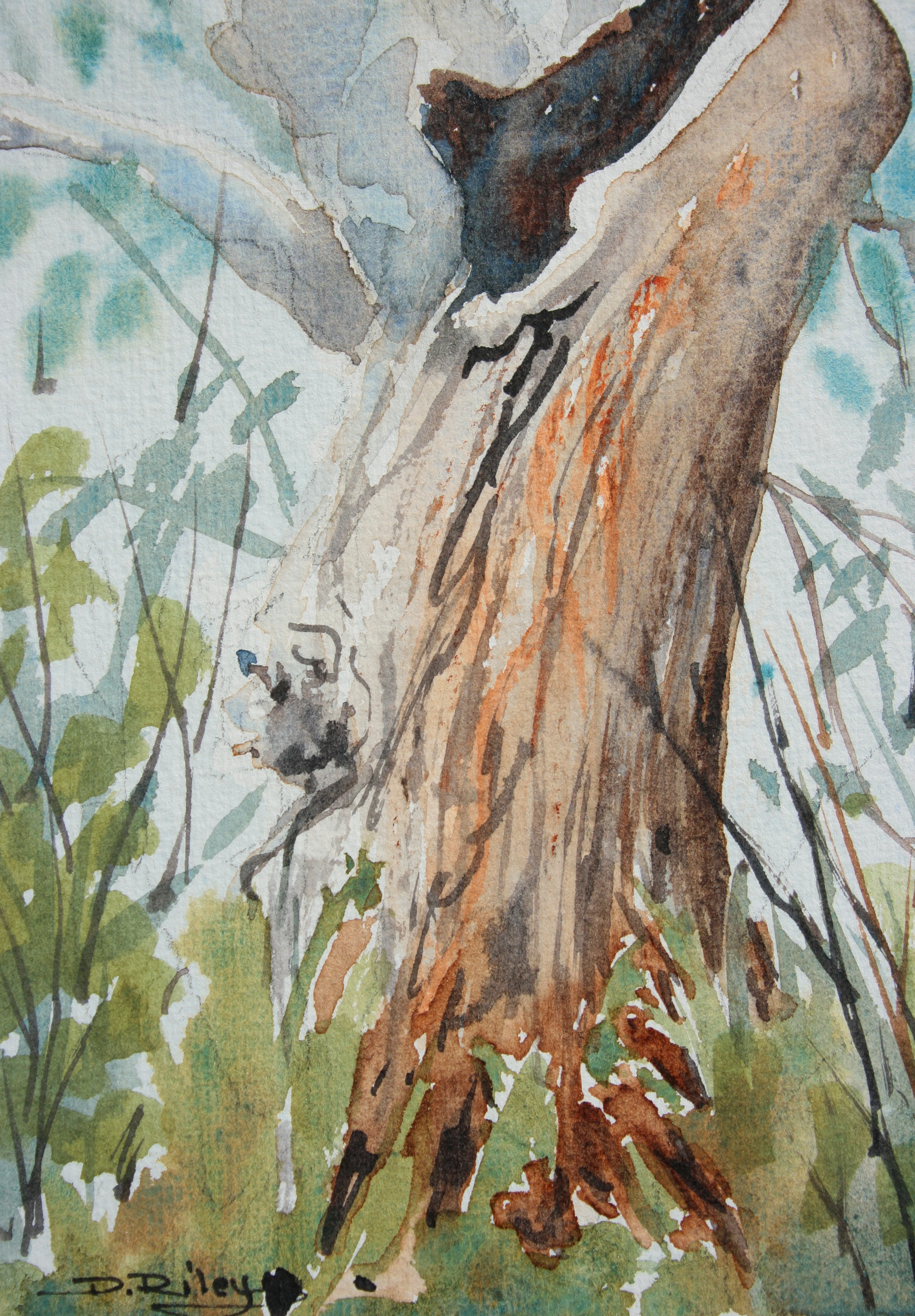 Watercolor Painting Trees And Foliage