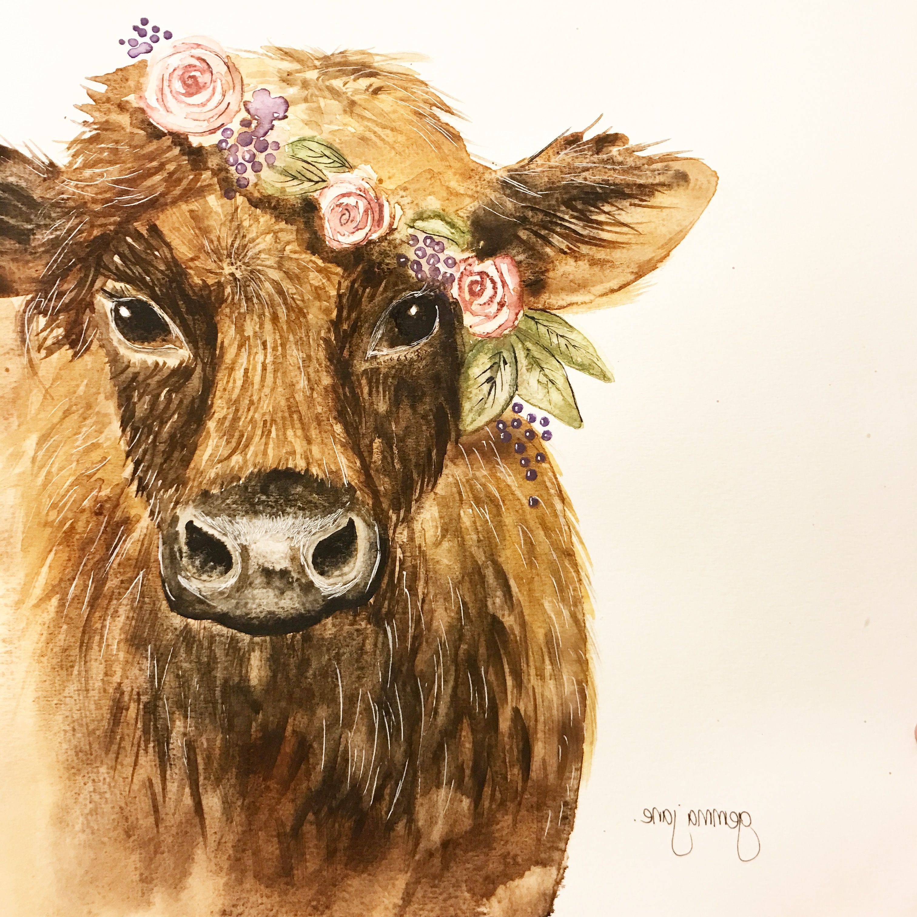 Watercolor Paintings Of Cows at GetDrawings com | Free for