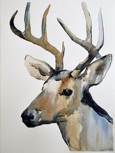 Watercolor Paintings Of Deer