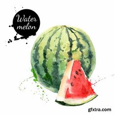 Watercolor Paintings Of Fruits And Vegetables