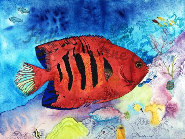 642x483 Flame Angel Fish Watercolor Art Tropical Fish Painting Limited Etsy