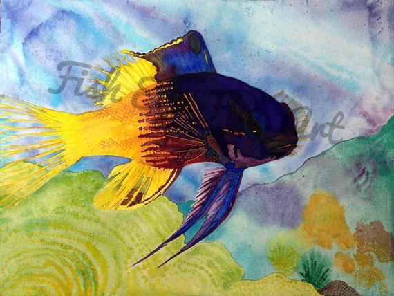 570x428 Royal Gramma Fish Watercolor Art Tropical Fish Painting High Etsy