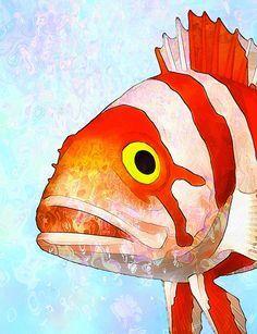 236x307 Fine Art Poster Underwater Paint Poster Art Fish Saltwater Fish